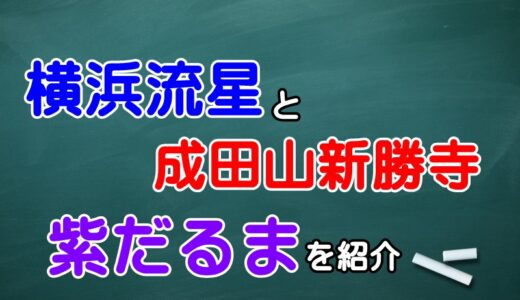 横浜流星は成田山に初詣!?噂の紫だるまと勝ち守りを紹介