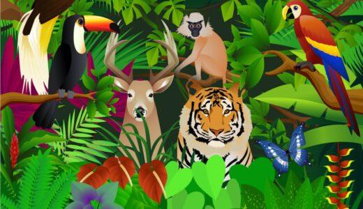 映画『ジャングル・クルーズ』字幕版を実際に見た感想!大人でも楽しめる?